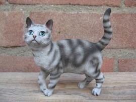 Kattenbeeldje/poezenbeeldje zilver tabby staand