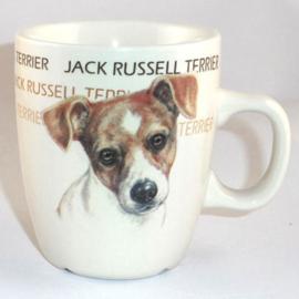 senseomok Jack Russell