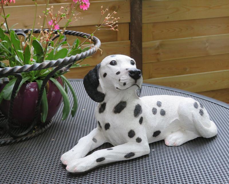 beeld Dalmatiër liggend middelgroot | 38 cm