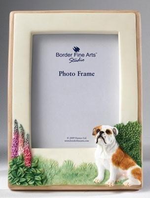 fotolijst Engelse Bulldog