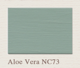 NC73 Aloe Vera Lack Painting The Past