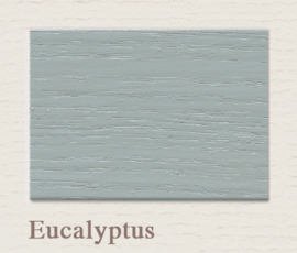 Eucalyptus OUTDOOR Lack Painting The Past