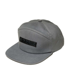 Mr. Serious Unknown Cap Grey
