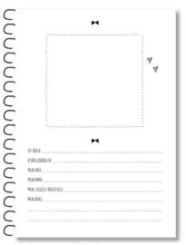 Miekinvorm Kraambezoek invulboekje