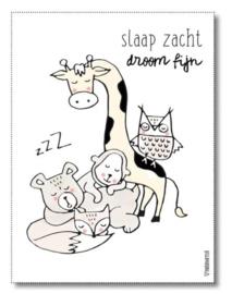 "Miekinvorm poster ""Slaap zacht droom fijn"" 30x40 cm"