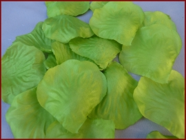 Strooiblaadjes Lime (15)