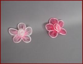 Haarbloem roze (488)