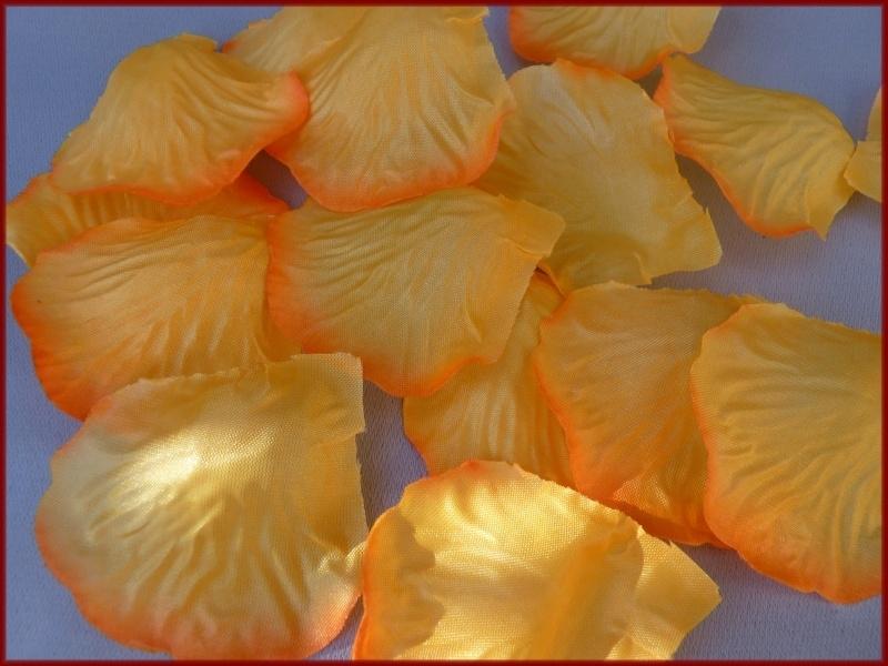 Strooiblaadjes - Oranje (15)