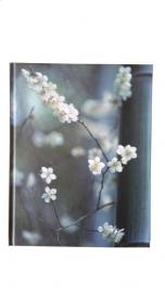 Notitieboek Zen Flower