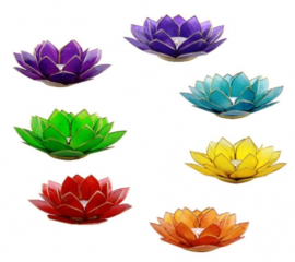 Lotus Sfeerlichten Set