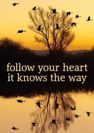 Ansichtkaart; Follow your heart.....