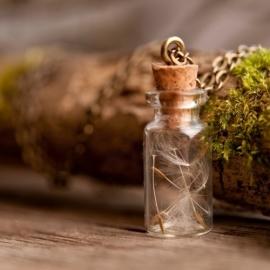 Dandelion halsketting flesje