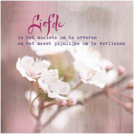 Dubbele Kaart; Liefde is het mooiste....