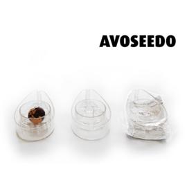 AvoSeedo Kweekpot