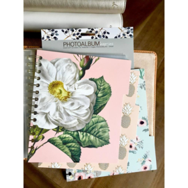 "Webster's Pages  Snap-In Decorative Dividers Small 6""X8"""