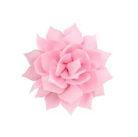 Haarbloem lotus roze