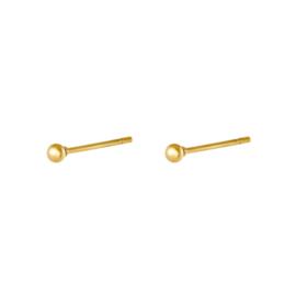 Oorbellen Chirurgisch staal Small dot