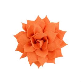 Haarbloem lotus oranje