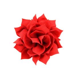 Haarbloem lotus rood