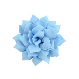 Haarbloem lotus  blauw