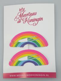 Haarspeldjes basic 5cm Regenboog