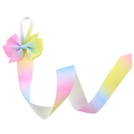 Haarspeldhouder met strik rainbow