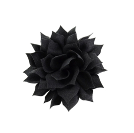 Haarbloem lotus zwart