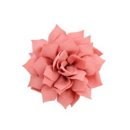 Haarbloem lotus koraal