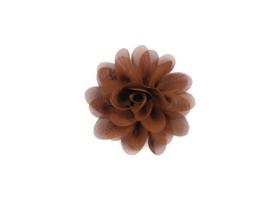 Haarbloem stof bruin