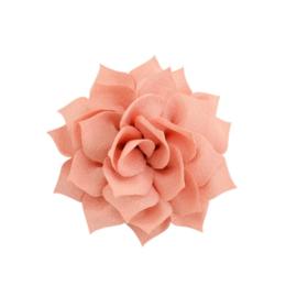 Haarbloem lotus zalm