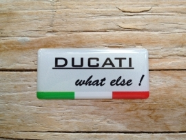DUCATI what else !  40x18 mm