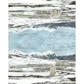Stenzo paneel Polar Bear