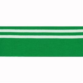 Boord dubbele streep groen - col. 433