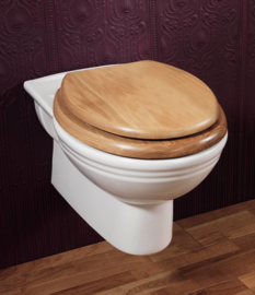 KSTS001 klassiek retro wand toilet