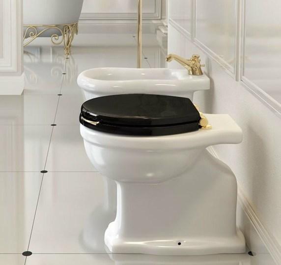 klassieke toilet met bidet