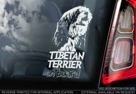 Tibetaanse Terrier - Tibetan Terrier V01