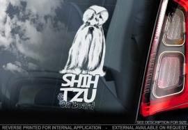 Shih Tzu V04