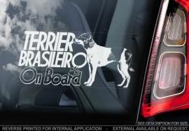 Terrier Brasileiro - Fox Paulisthina V02