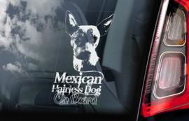 Mexicaanse Naakthond - Xoloitzcuintle - Mexican Hairless Dog V01