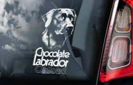 Labrador Retriever V03