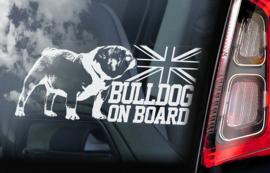 Engelse Bulldog - English Bulldog - V01