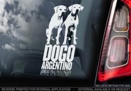 Dogo Argentino ongecoupeerd V04