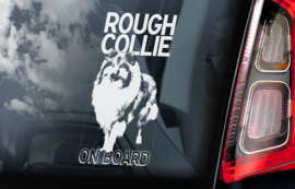 Schotse Herdershond (Collie) - Rough Collie   V01