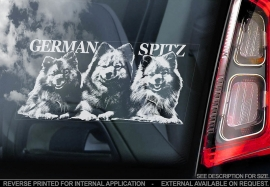 Keeshond - Duitse Spits - German Spitz -  Tysk Spets V02