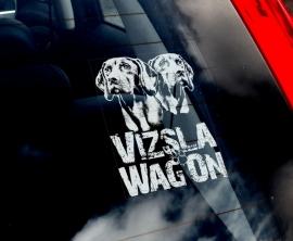 Hongaarse Vizsla V03