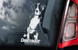 Dalmador V02