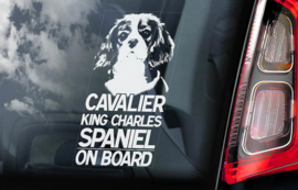 Cavelier King Charles Spaniel V01