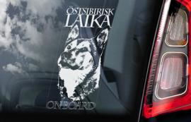 Oost-Siberische Laika - Ostsibirisk Laika  V01