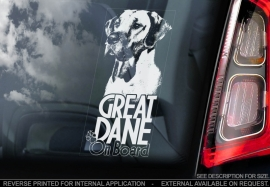 Duitse Dog - Great Dane  V02