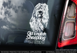 Old English Sheepdog -  Bobtail V01